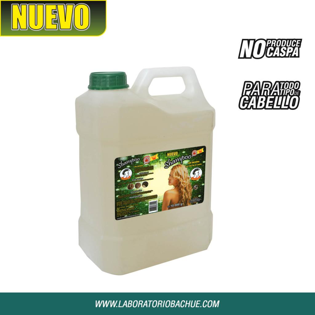 shampoo bachue 10000grs