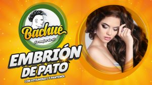EMBRION PATO BACHUE BANNER